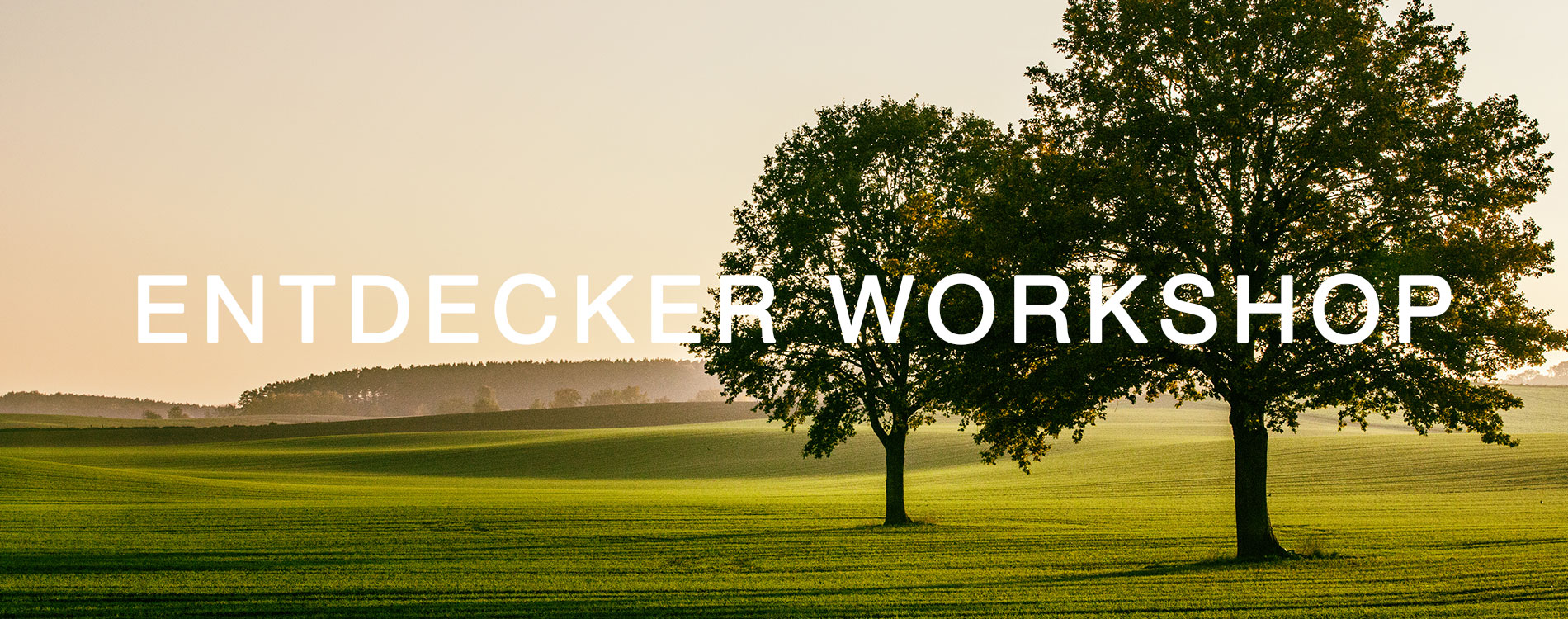 Entdecker Workshop