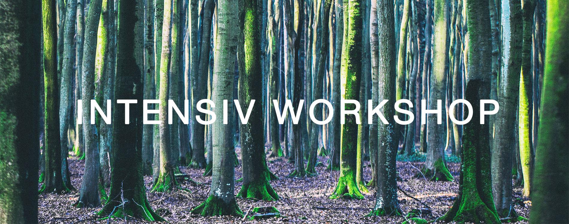 Intensiv Workshop
